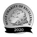 Medium Charity Of Excellence Seal Png